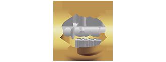 Logotipo Ticap